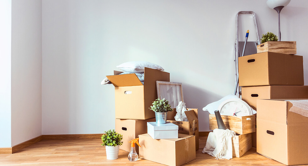 Moving: Your Definitive Guide